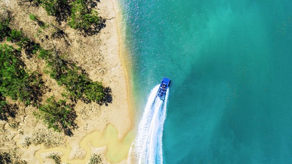 Darwin Adventure featuring Darwin Airboat Tours for 2 people - NT Now