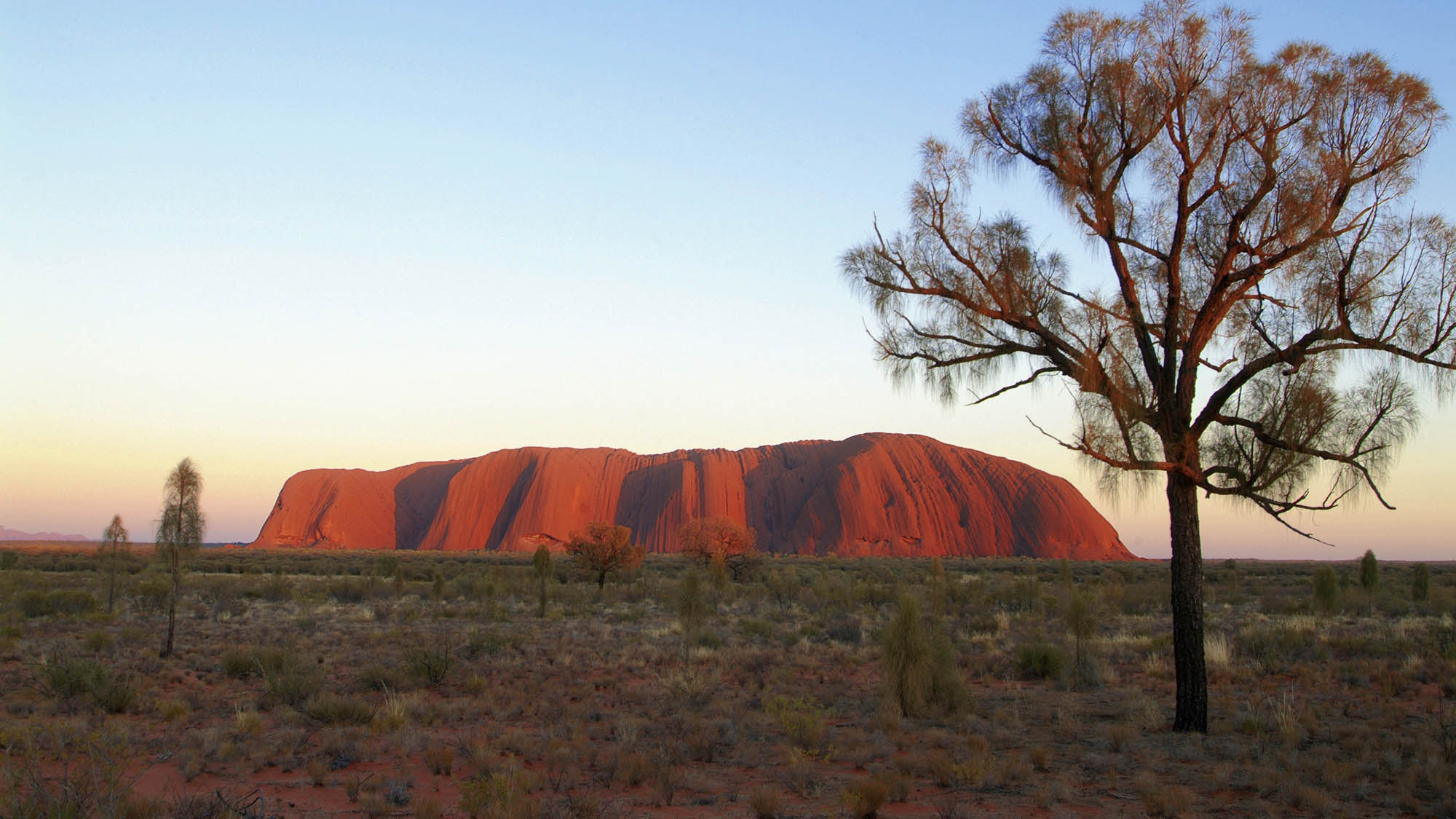 The Ghan and Red Centre with Sails in the Desert - NT Now