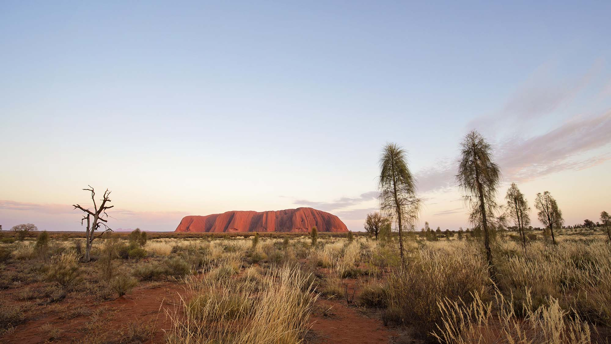 Uluru and Kings Canyon Self-Drive